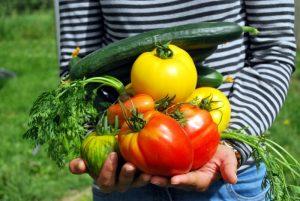 Arm voller Gemüse