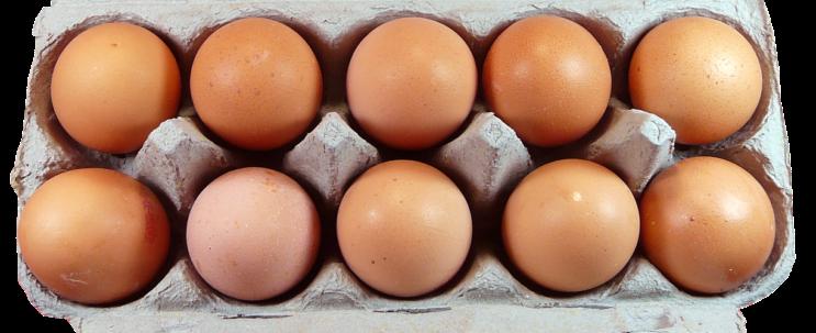 Eierlutschen