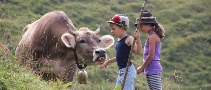 Heute Rinder, morgen unsere Kinder?